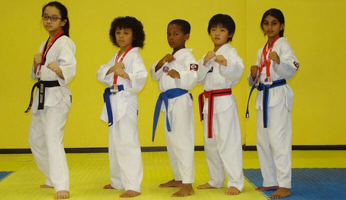 white tiger taekwondo - 900×525